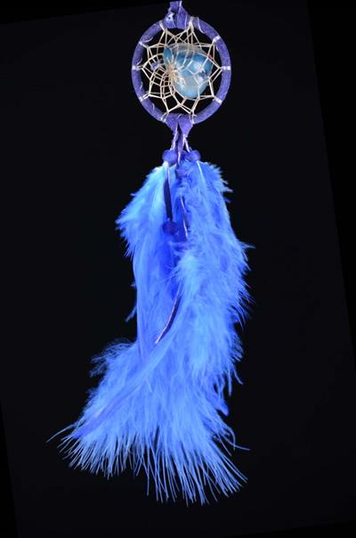 Blue Protect the Earth DreamCatcher (2 inch)