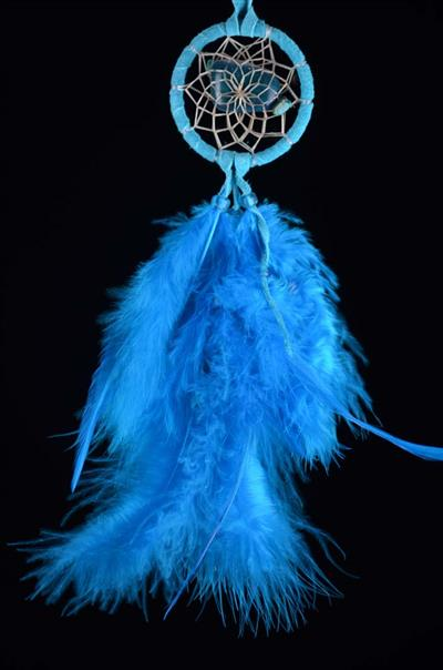 Turquoise Protect the Earth DreamCatcher (2 inch)