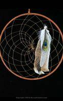 Large Brown Dream Catcher (12 inch)