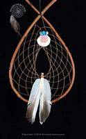 Authentic Red Willow Tee Pee Dream Catcher With Shell And Turquoise Bundle