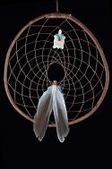 Authentic Red Willow Dream Catcher With Turtle and Duck Feathers