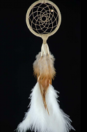 2.5 Inch Woodland Dream Catcher